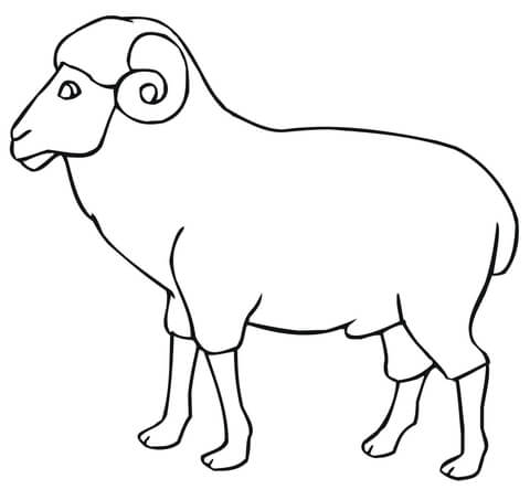 Ram Outline coloring page