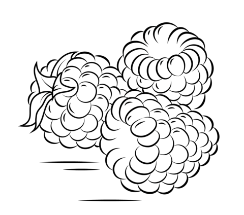 Three Raspberries coloring page