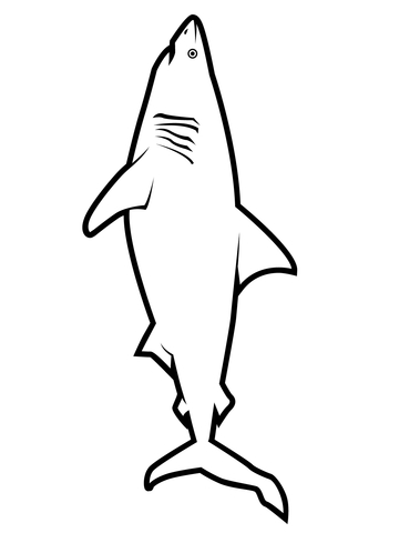 Realistic Great White Shark coloring page