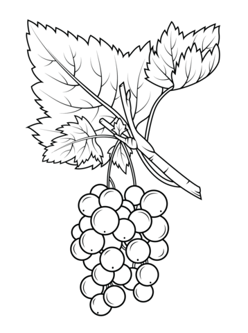 Red Gooseberry coloring page