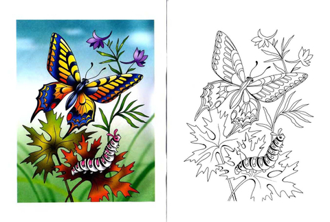 Swallowtail Butterfly and Caterpillar coloring page