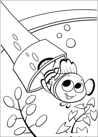 Nemo Swimming Out  coloring page
