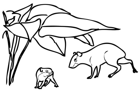 Two Agoutis coloring page