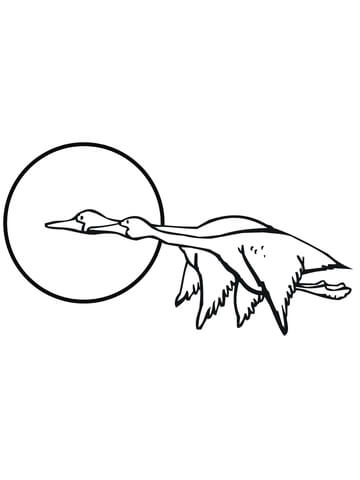 Goose Bird Coloring Page Two Flying Geese