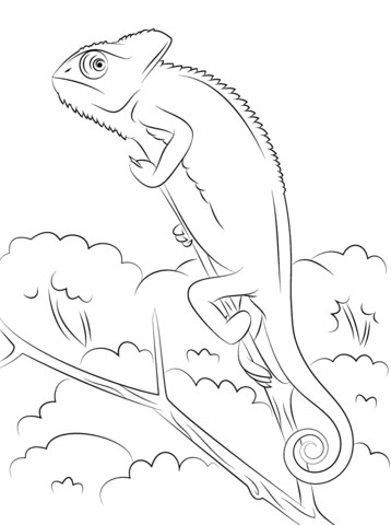 Green Basilisk Coloring Page Free Printable Coloring Pages