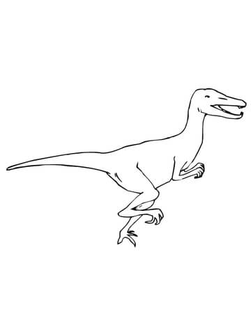 Velociraptor Dino Coloring Page Free Printable Coloring Pages