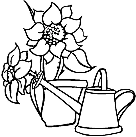 Watering Can and Sunflowers  coloring page