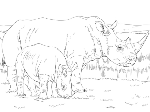 White Rhino Mother and Baby Coloring page