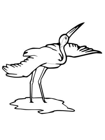 Whooping Crane Bird coloring page