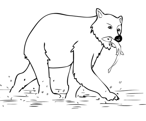 Young Brown Bear coloring page